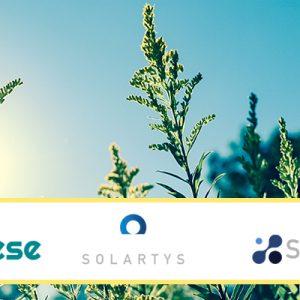 ¿Cómo los servicios energéticos aportan sostenibilidad y eficiencia energética a tu empresa?